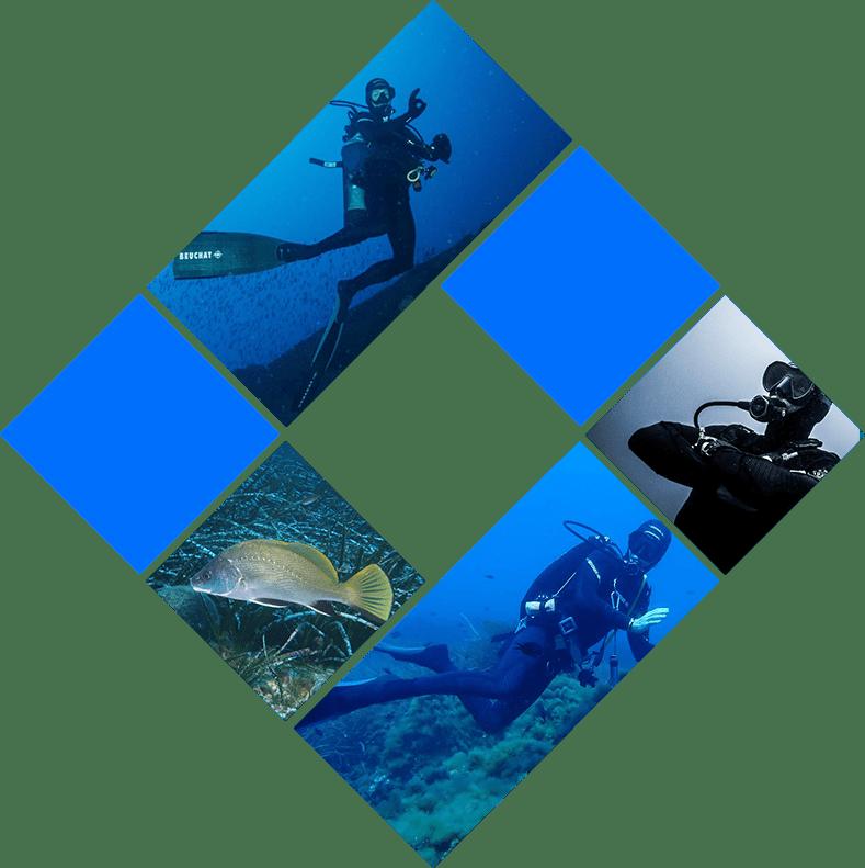 Formation plongée sous-marine Provence-Alpes-Côte d'Azur